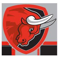 Salzburg Bulls